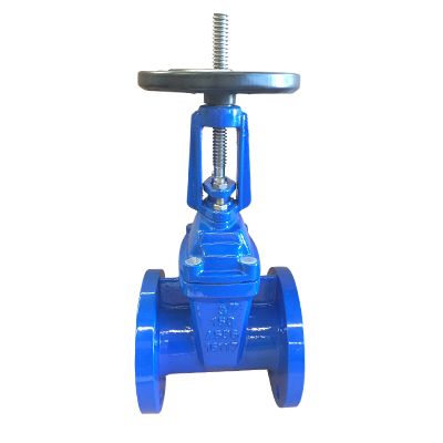 Rising Resilient Seated Gate Valve ANSI125/150
