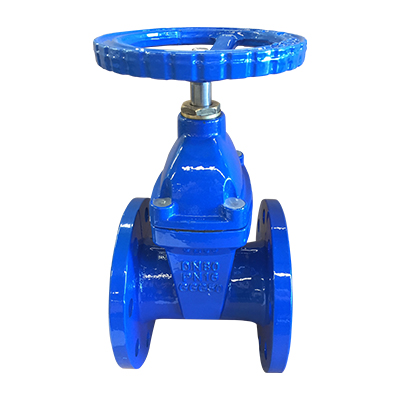 Resilient Seated Gate Valve w/brass gland DIN3352 F